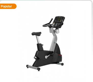 Life Fitness Club Series Upright Lifecycle® Exercise Bike