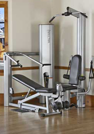 Vectra 1450 Home Gym